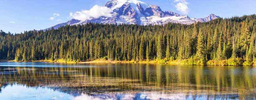 Mt Rainier reflected